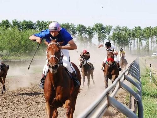 اسب دوانی اق قلا